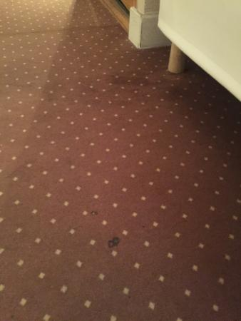 Hotel Bellan: Floor