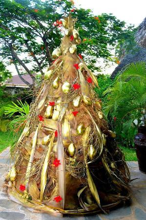 Albero Di Natale Kenia.L Albero Di Natale In Cocco Picture Of Luna House Malindi Tripadvisor