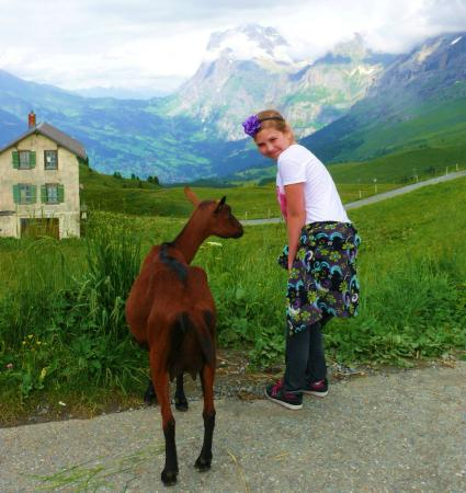 Grindelwald, Schweiz: A great family hike