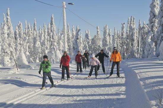 Hiihtokeskus Ukkohalla: Cross-country skiing