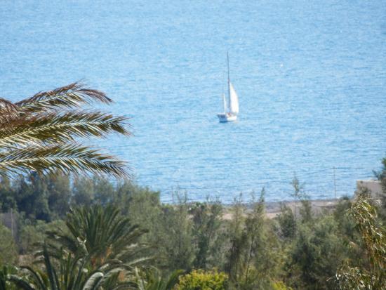 Hello - Picture of Oasis Park Fuerteventura, Fuerteventura - TripAdvisor