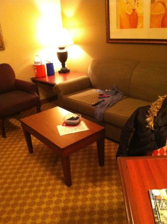 Country Inn & Suites by Radisson, Schaumburg, IL: king suite with seating and pull-out couch