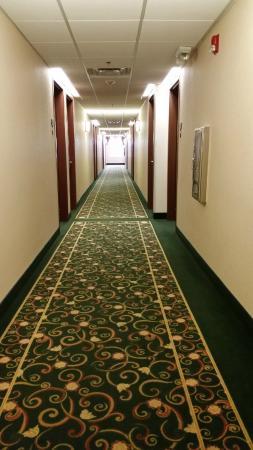 Hawthorn Suites by Wyndham Louisville East: 4th floor hallway