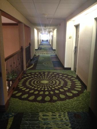 Auburn Place Hotels and Suites: hallway to the rooms- 2nd floor