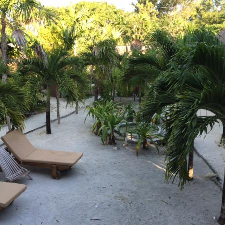 OASI: Lounge Chairs in the Garden area