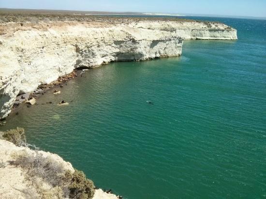 Loberia de Punta Loma