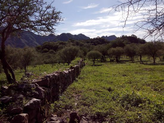 Ruinas de El Shincal: ruinas shincal