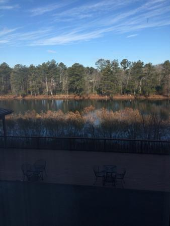 Holiday Inn Express & Suites Atlanta Airport West - Camp Creek: The view!