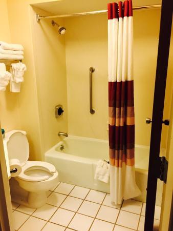Red Roof Inn Nashville - Music City : Bathroom