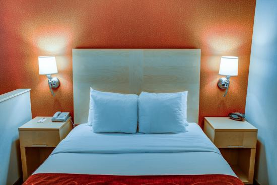 Comfort Suites: Queen Suite