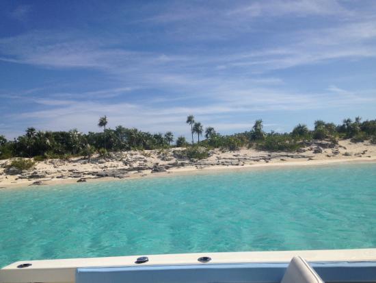 Grand Isle Resort Spa Nicholas Cage Iguana Island