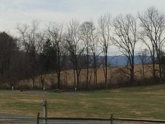Landscape - Misty Mountain Camp Resort: campground view