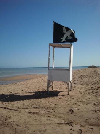 Kiteboarding Club El Gouna: El Gouna