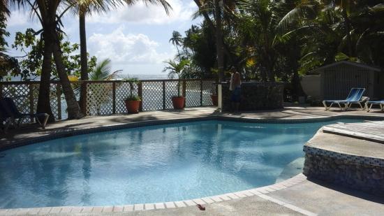 Caribe Playa Beach Hotel : from pool area