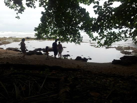 Agapi: Playa Cocles