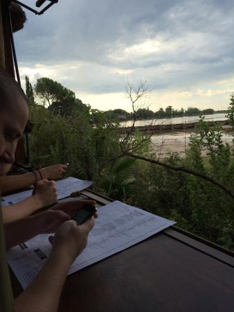 River Cafe: Great view during dinner!