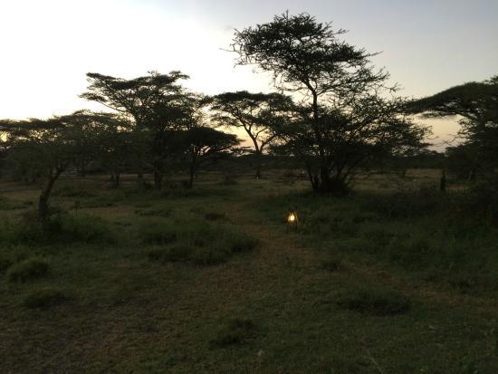 Ang'ata Migration Camp: scenic!