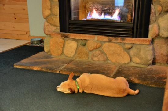 3 Peaks Resort & Beach Club: The Buddy loves the fireplaces