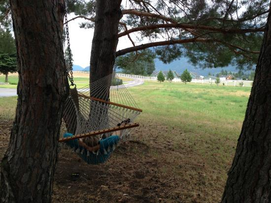 Bad Rock Bed and Breakfast: Hammock just outside the two-story cabin