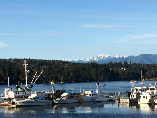 Port Ludlow, Waszyngton: Morning view from the deck of room 201
