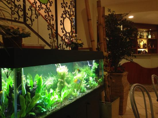 San Siro Fiera: acquario hall
