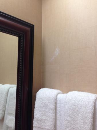 Country Inn & Suites by Radisson, Portage, IN: Previous guests toothpaste on wall