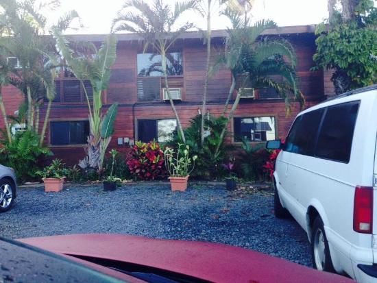Peace Of Maui: Parking area