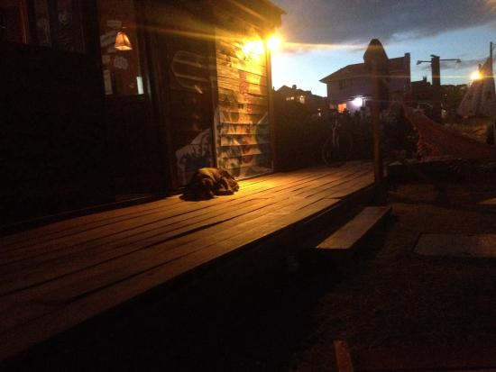 Unplugged Hostel Punta Del Diablo