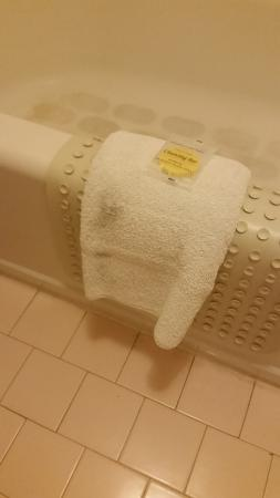 Yuma Airport Inn: Stained bathroom towel