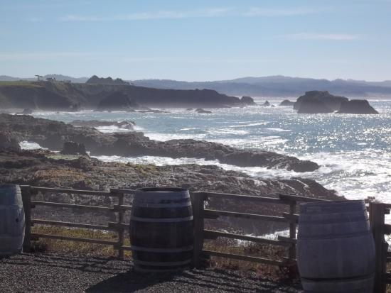 Pacific Star Winery : Stay for the views from the picnic area