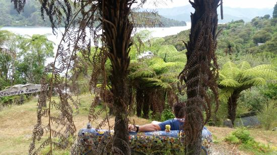 Lochmara Lodge Marlborough Sounds Wildlife Recovery Centre : View from an artwork bench