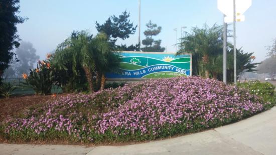 Calavera Park