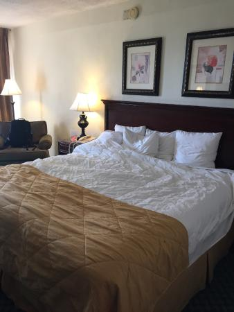 Econolodge Port Canaveral Area : bed