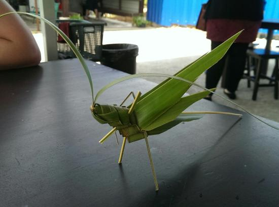 MARDI Langkawi Agro Technology Park: They gave us (expecting nothing in return) this great grasshopper made from a leaf!