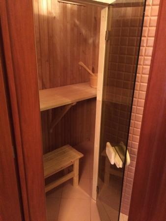 Sauna Dans La Premiere Salle De Bain De La Suite Presidentielle