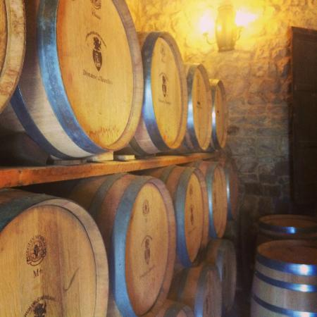 Club Grappe Wine Tours