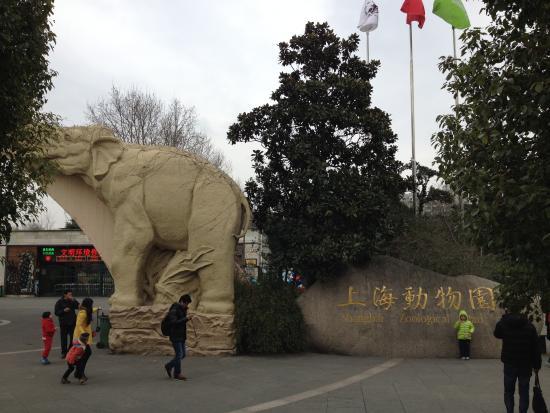 Shanghai Zoo (Shanghai Dongwu Yuan): 地下鉄10号線でいけます
