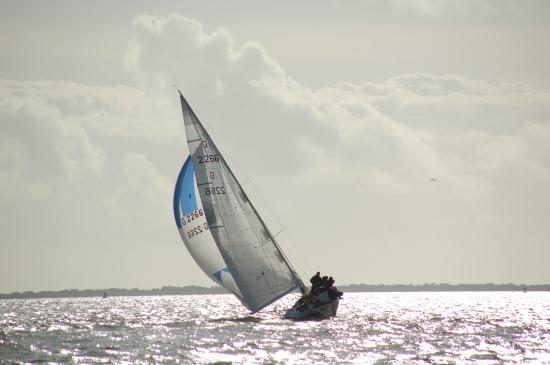 South Coast Sailing