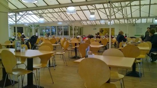 Wyevale Findern Restaurant