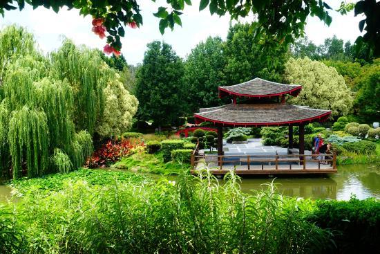 japanese pergola picture of hunter valley gardens. Black Bedroom Furniture Sets. Home Design Ideas