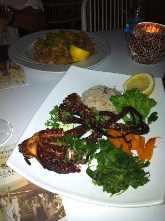 NOA restaurant & bar: Octopus