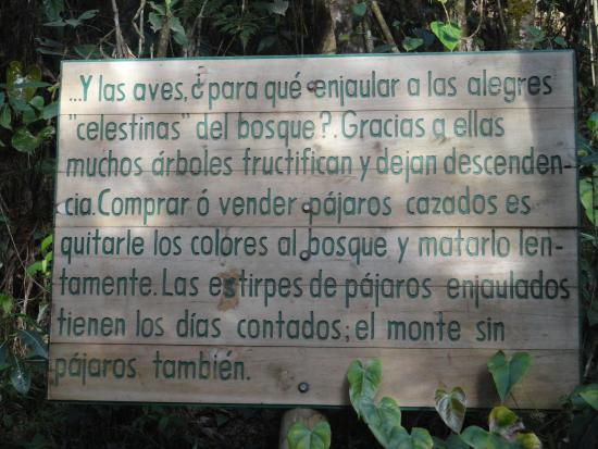Santa Elena, Colombia: cuidan la naturaleza