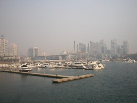 Qingdao International Sailing Centre: Marina