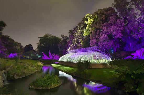 Nocturnes au Jardin- ©Xavier Boymond- TUP - Photo de Jardin des ...