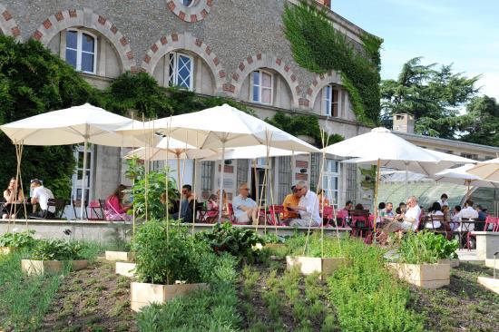 Xavier Boymond- TUP - Picture of Jardin des Plantes, Nantes ...