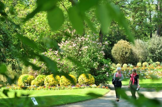 All es du jardin photo de jardin des plantes nantes for Restaurant jardin des plantes nantes