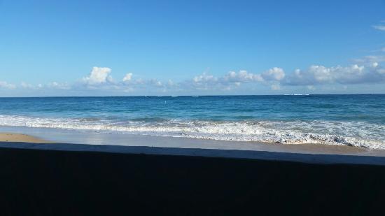 Serene Ocean Park Beach in the a.m.