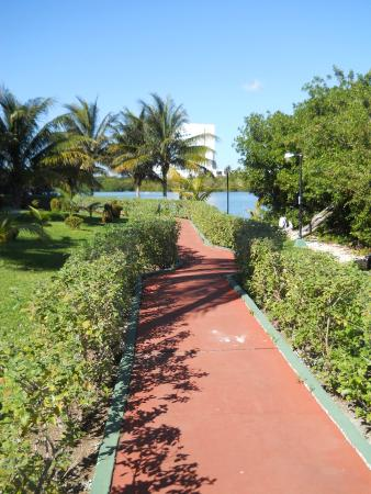 Cancun Clipper Club: Pathway at the hotel