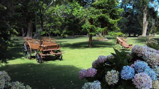 Hotel Nirvana: jardins lindos
