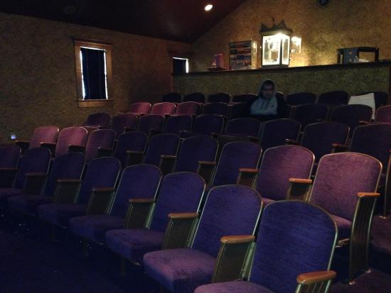 Maple House Inn Bed and Breakfast: Indoor Movie Theater